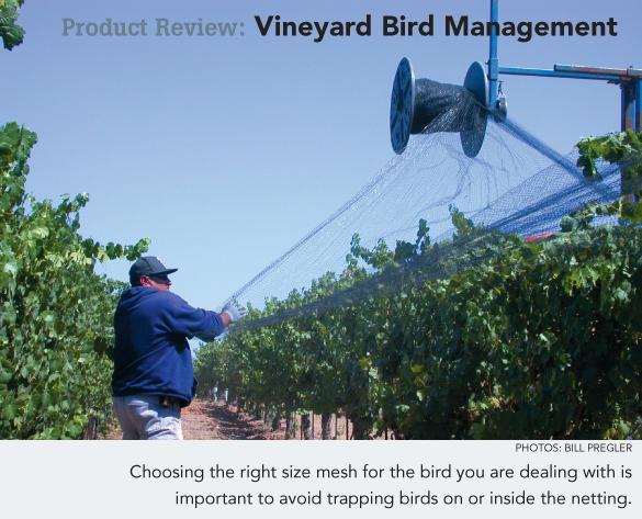 Product Review: Vineyard Bird Management