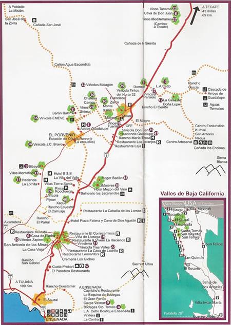 Banner Year For Baja California Wines