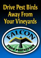 Falcon Crop Protection