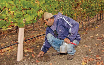 Monitoring Soil Moisture