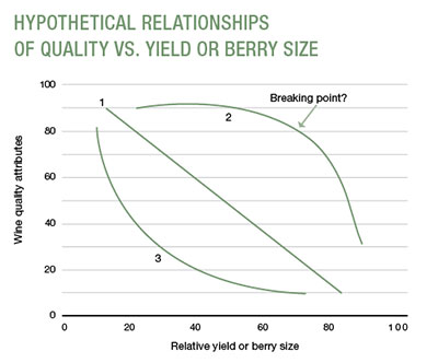 HYPOTHETICAL RELATIONSHIPS ?OF QUALITY VS. YIELD OR BERRY SIZE