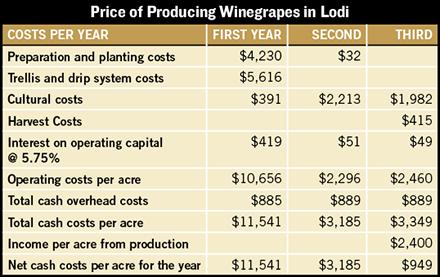 fresno cabernet planting costs