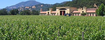 clos pegase vintage wine estates
