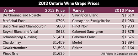 ontario grape prices