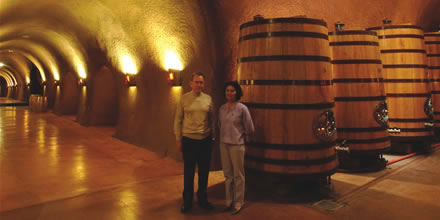 Subterranean Wineries: advantages of going underground