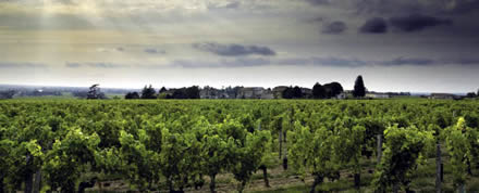 Wineries and the Recession