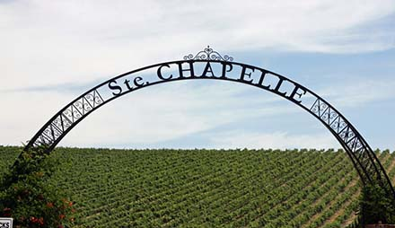 ste. chapelle precept wine