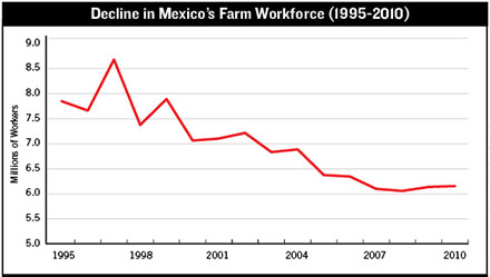 Mexico labor decline
