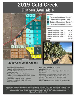 2019 Cold Creek Grapes Available