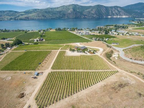 Established Winery For Sale in Lake Chelan